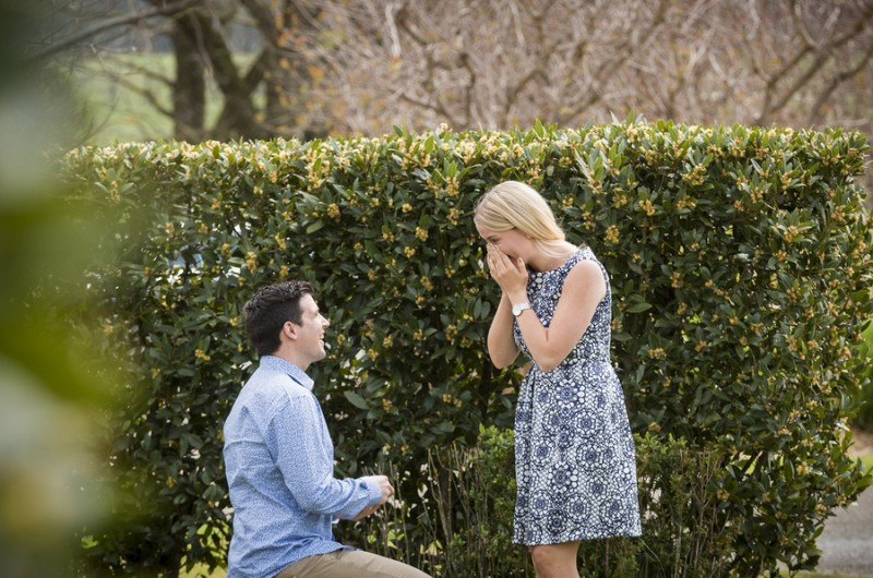Image for Paul and Elise's Australian Yarra Valley Vineyard Proposal