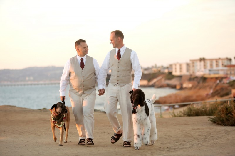 Image for Paul and Ray's Bright Red Beach Wedding