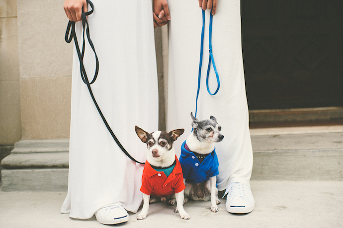 tips-for-having-your-dog-in-your-wedding