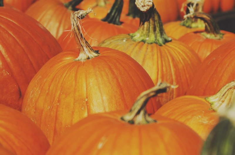 Image for 9 Pumpkin Spice Beauty Products to Spice Up Your Fall
