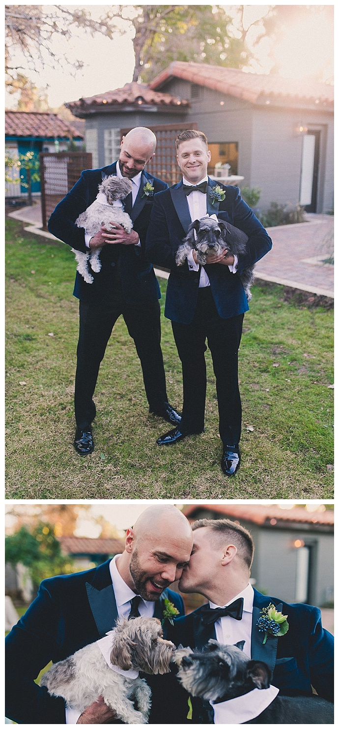 dogs-in-weddings-backyard-wedding-mike-olbinski-photography