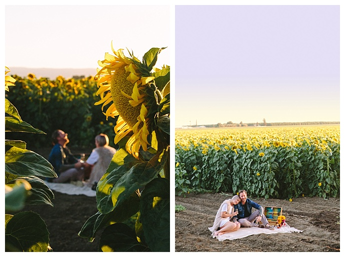 surprise-sunflower-proposal-r-and-e-photography