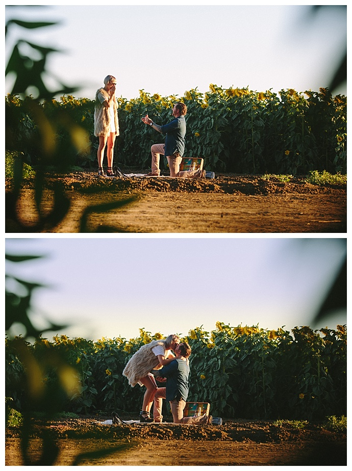 surrounded-by-sunflowers-proposal-r-and-e-photography