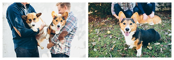 engagement-shoot-with-dogs-cassandra-zetta-photography