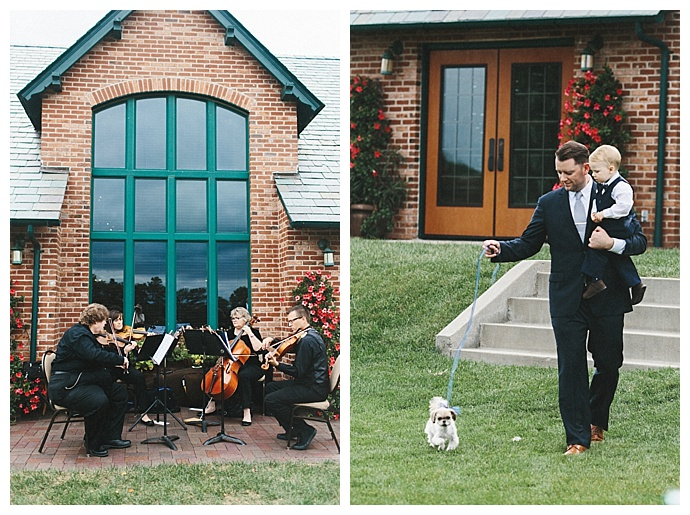 dogs-in-weddings-mae-small-photography