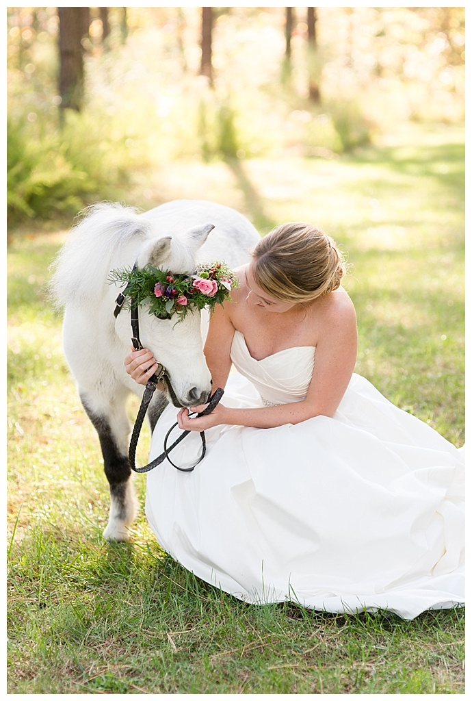 mini-horse-wedding-pictures-megan-travis-photography