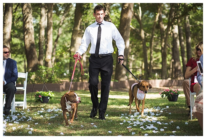 dog-tuxedos-for-weddings-cory-lee-photography