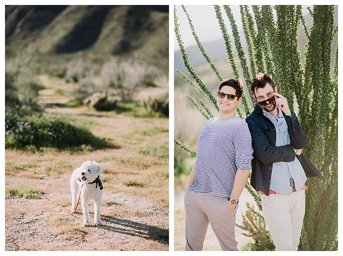 dogs-and-engageent-shoots-lets-frolic-together-photography