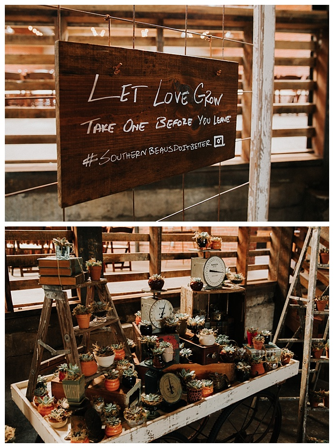 let-love-grow-succulent-wedding-favors-t-and-k-photography