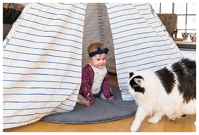 Minted Play Tent