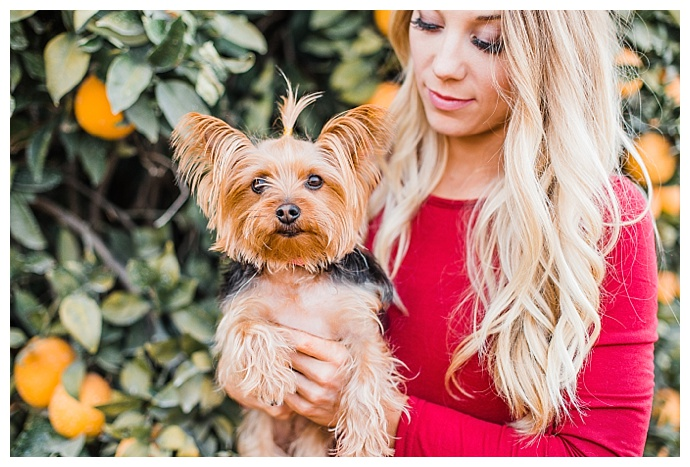 dana-sophia-photography-dogs-in-family-photos