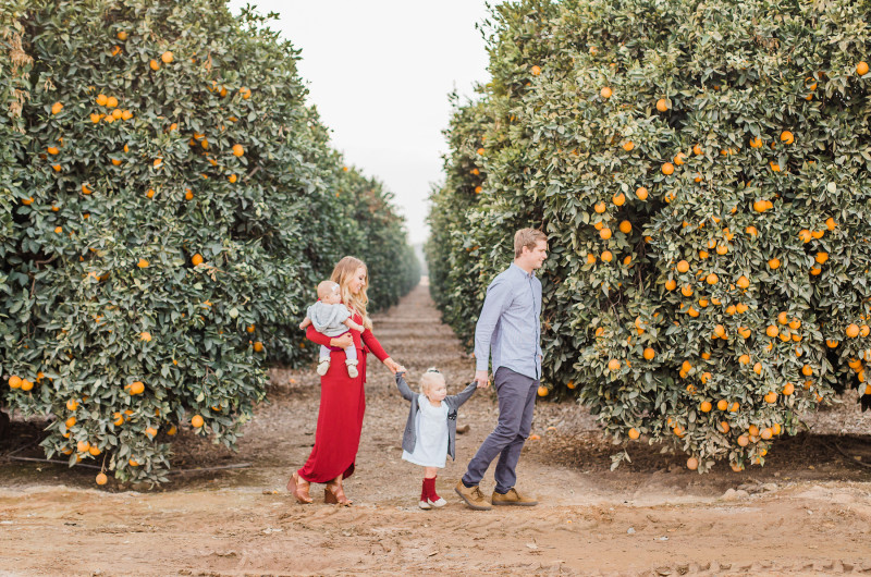 Image for Whitney and Austin's Adorable Orange Grove Family Session