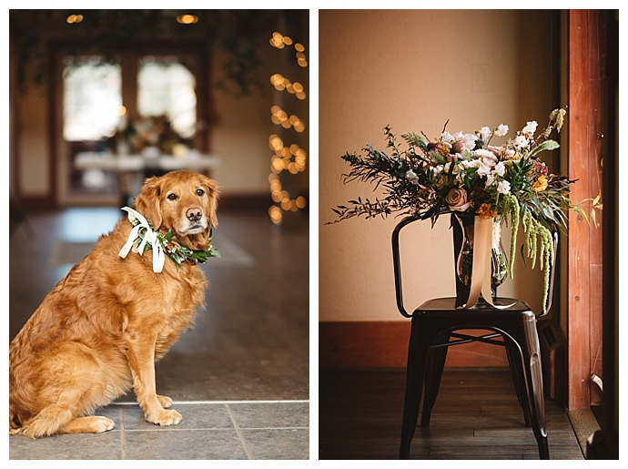 floral-wedding-wreath-for-dog-kate-merrill-photography