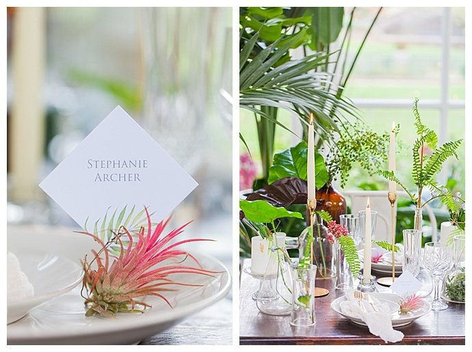 amanda-karen-photography-air-plant-place-card-holder