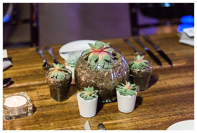 succulent-wedding-decor-kimberly-weber-photography