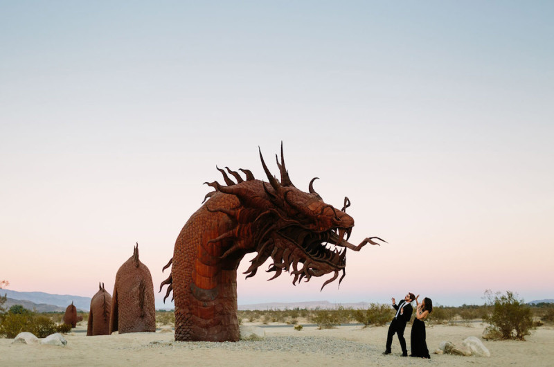Image for Robyn and Eric's Fun-Filled Borrego Springs Engagement Shoot