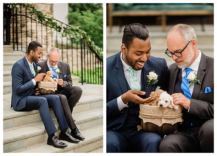 gay wedding with puppies