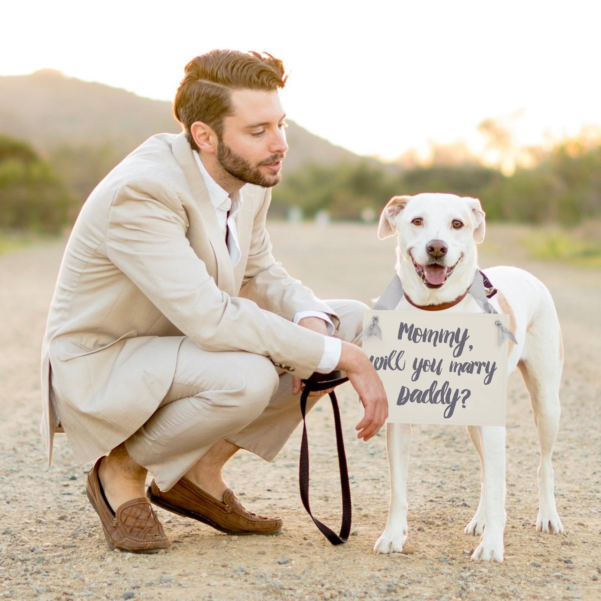 dog-proposal-sign
