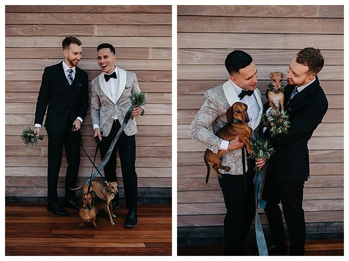 dogs-in-weddings-maria-campbell-photography