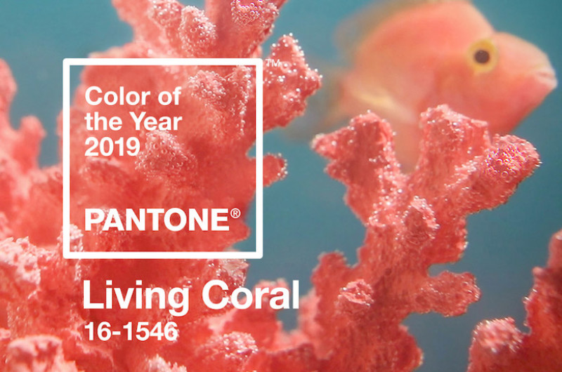 Image for Pantone's 2019 Color of the Year Living Coral Wedding Ideas