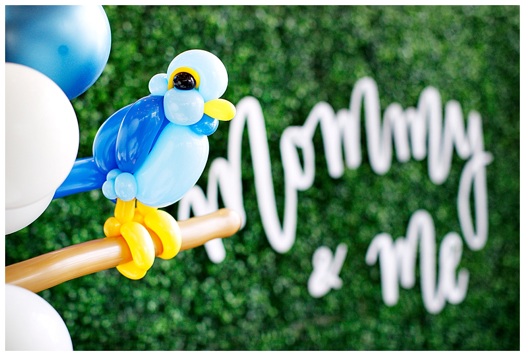 Balloon Artistry Bird Themed