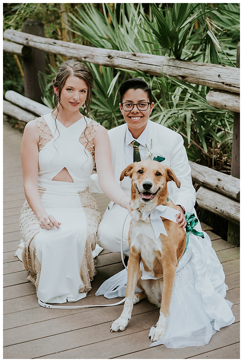 brides-and-their-dog
