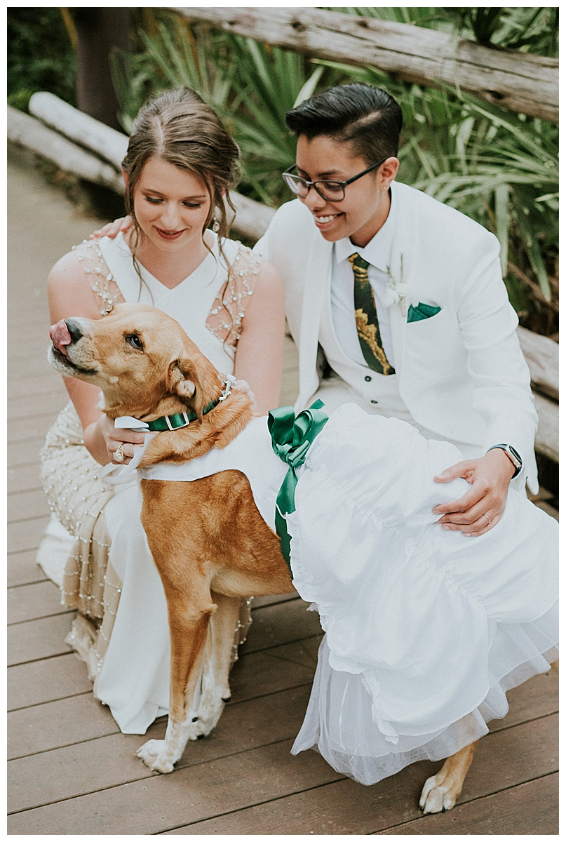 brides-with-their-dog