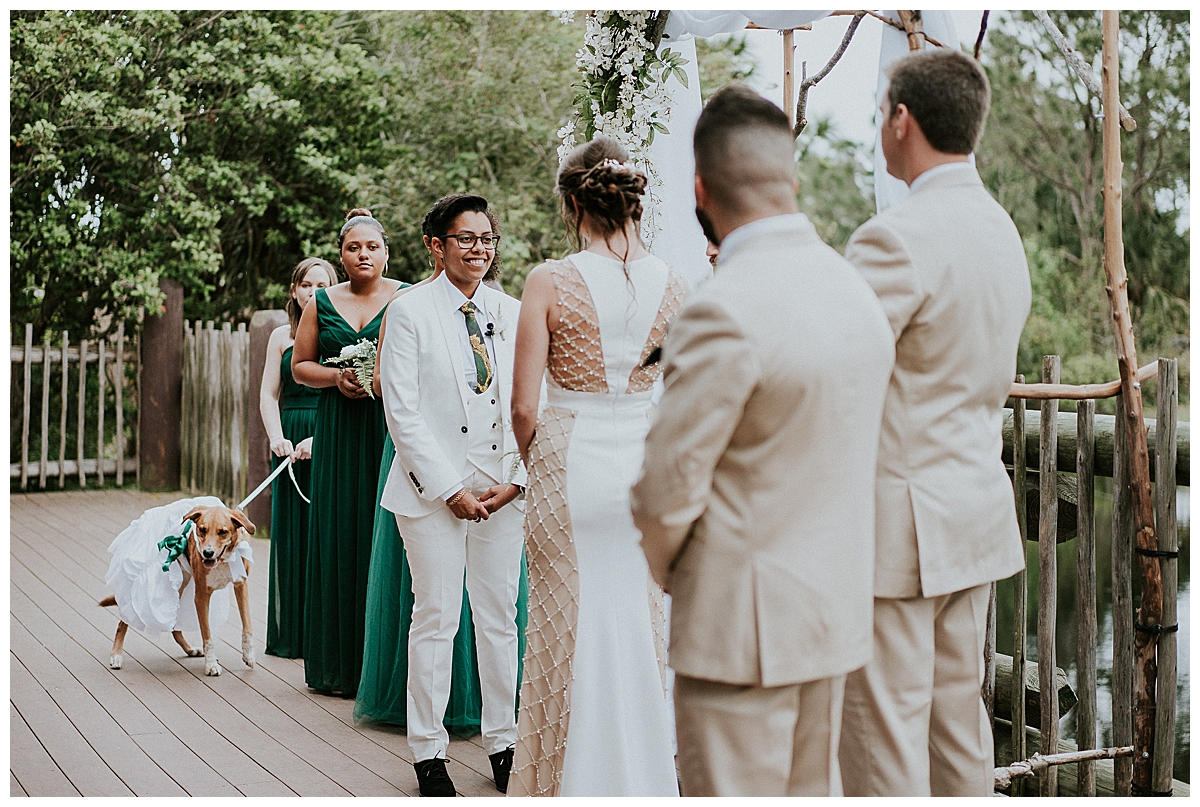 dogs-in-wedding