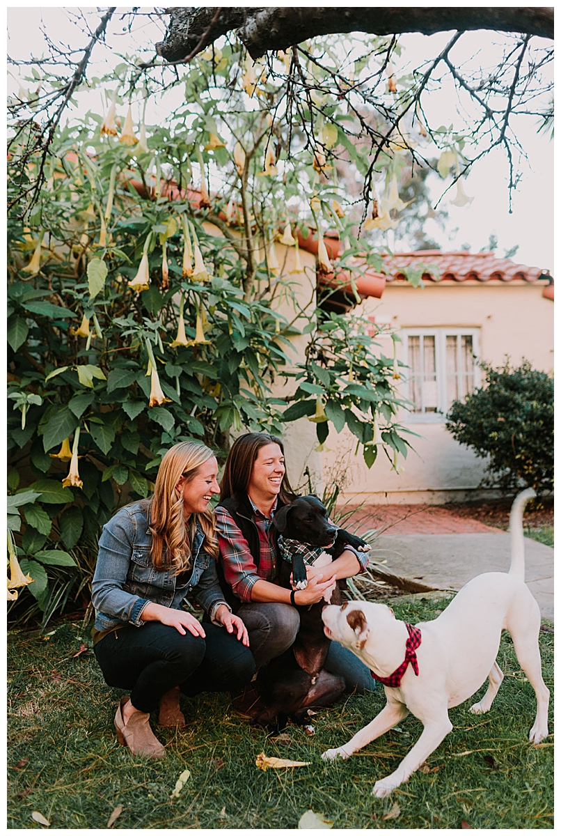 engagement-shoot-with-pets