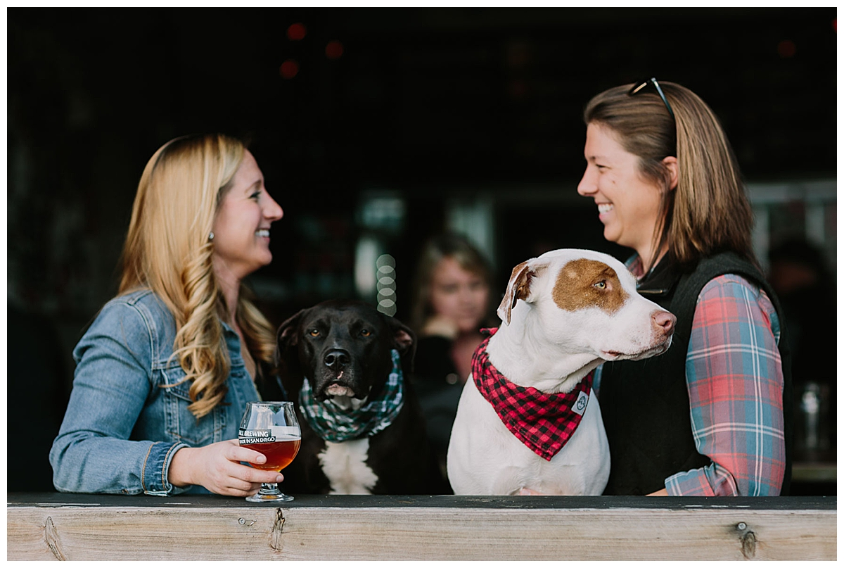 fall-brewing-brewery-engagement-shoot