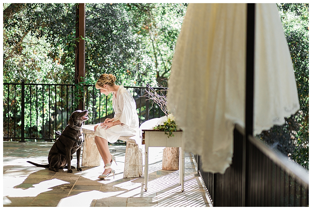 bride-and-her-dog-wedding-photography