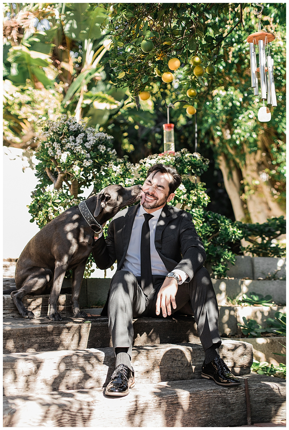 groom-and-his-dog-wedding-day-photography