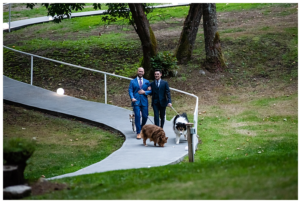 grooms-processional-with-pets