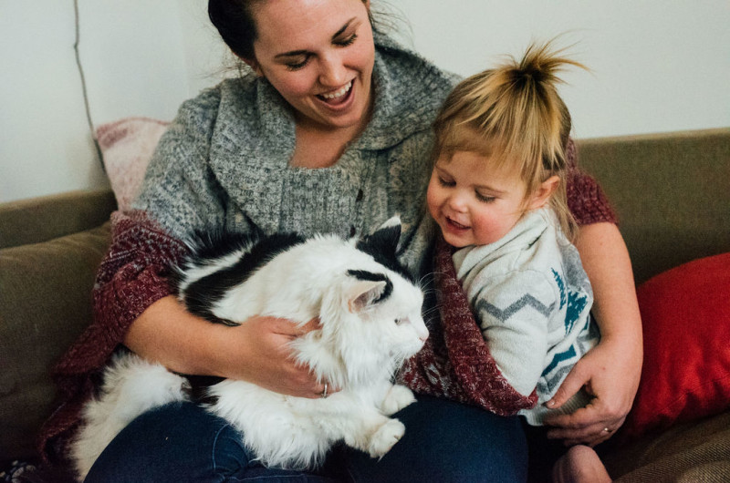 Image for A Day-in-the-Life Family Session to Celebrate My Sick Kitty