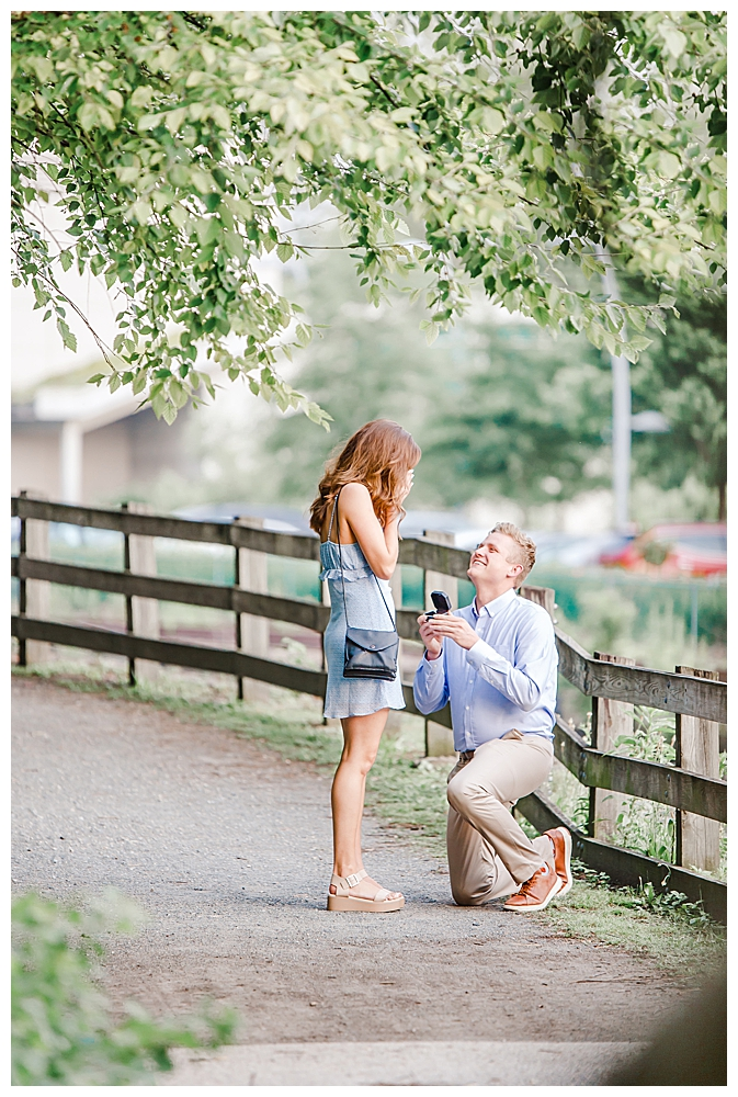 proposal-photography-1
