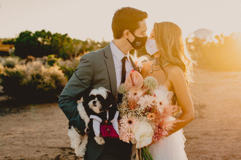 Image for Joshua Tree Elopement During COVID, But Make It Fashion